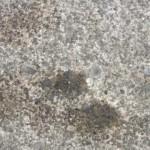 月極め駐車場で発見したオイル漏れの形跡